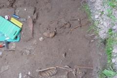 Archäologische Grabung 7