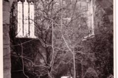 Bild8